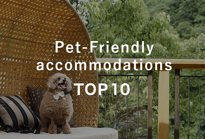 Top 10 Pet-Friendly