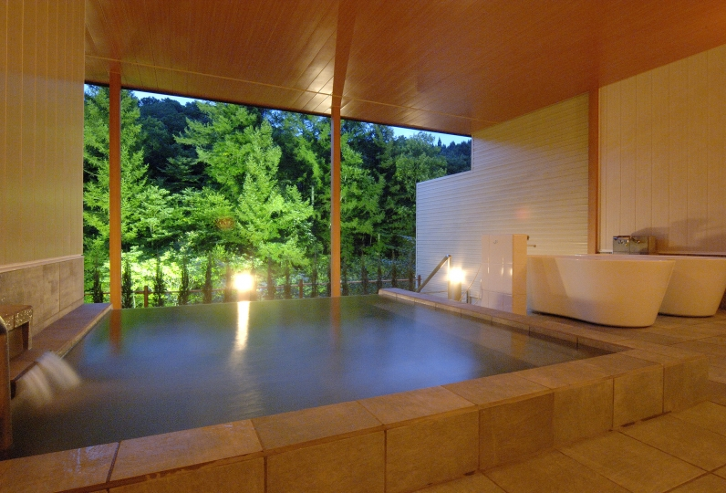 Ryu Resort and Spa / Gifu Hida・Takayama 115