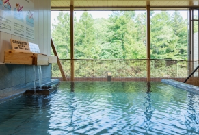 Ryu Resort and Spa / Gifu Hida・Takayama 13