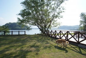 Lakeside Hotel and Restaurant Little White Flower / Kyoto Tango・Kumihama 39