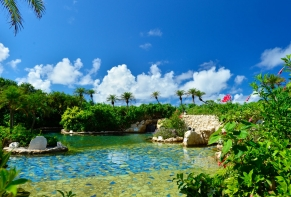 Hotel Shigira Mirage / Okinawa Isolated island 16